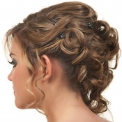 prom-hair-back-view